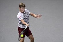 ATP World Tour Finals - David Goffin donderdag eerste Belg in seizoensfinale